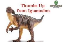 Dinosaurs in Schools / Dinosaur and fossil  themed teaching resources for use in school. Everything Dinosaur's teachers and dinosaur experts provide resources for schools and home educators.
