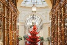 Winter & Holidays in Paris / Holiday lights, magical Christmas windows at Galeries Lafayette & Printemps, warming up with a vin chaud and the best holiday shopping in the world ... it's time for Christmas in Paris!