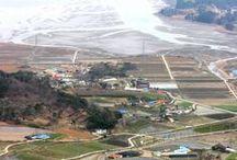 Garorim Marina / Garorim Marina . Garorim Bay . Seosan . Chungnam . Korea