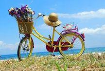 Bike & Flower