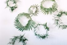 greenery / Natural greenery. Plants, leaves and flowers for the home and garden. Be inspired to look to nature to help you slow down, feel creative and make natural decorations for your home. Create a simple and rustic look with ease.