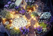 Gardening & Home Decor