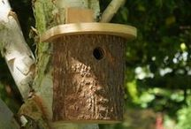 """""""SPC Select"""" Wild bird Products / We have a range of top quality wild bird products for your garden, from bird feeders to nest boxes and wild bird accessories to bird baths. Click on any of the categories below to see all the products in that range that are available."""