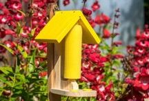 """""""SPC Select"""" Wildlife Products / We have a wide selection of wildlife products. From bat boxes to butterfly feeding stations, there's a product for every garden. Visit www.spcselect.co.uk to view our full range of products."""