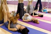 Yoga Pets / by Shae Von Marsh