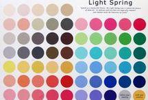 12 Seasons Light Spring