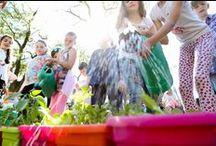 Perugia Flower Show 2016 - Spring Edition ✿