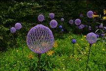 Garden stuff / by Judy Wirkkala