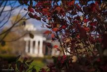 Life at UD / The people and places that make life at the University of Delaware so special.