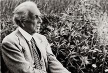 Frank Lloyd Wright / by Ann Schmidt