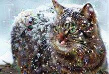 ♥ DEEP DREAM ♥ / Some of the best Google Deep Dream photos.