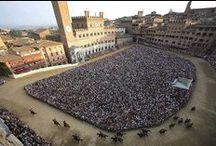 Palio / Il 2 luglio e il 16 agosto a Siena, in Piazza del Campo, si svolge il tradizionale Palio, una corsa di cavalli montati a pelo (senza sella) tra le diverse contrade di Siena.