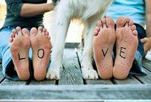 love & dogs