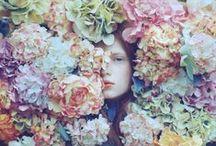 Flowers & Ideas / Beautiful flowers and ideas.