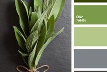 add color / colors, ideas,