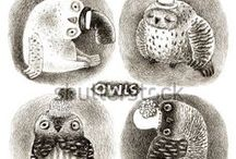 Owls / Original high resolution graphic artworks - stock illustrations