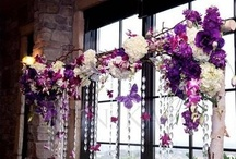 decorating ideas / by Morgan Rose
