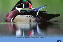 JHU Press News / by Johns Hopkins University Press