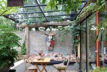 Balcony  Gardening.