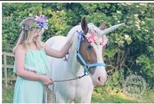 Wings and Whimsy Enchanted Portraits / ENCHANTED STYLED AND THEMED PORTRAIT EVENTS FOR CHILDREN