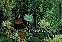 Club Tropicalia  / Interior musings and inspirations of a Brazilian persuasion