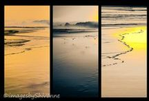 Snapshots taken by me / Photos taken by me of the South Island of New Zealand where I live.