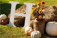 Fall Decor for Parties / Decorate your parties with gourds, leaves, pumpkins, nuts and other seasonal materials coloured in gold and orange!