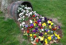 DIY Garten und Beete / Der Frühling ist da! Hier zeige ich euch Ideen zur Garten- und  Beetgestaltung und DIY Projekte für den Garten.