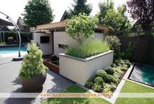 Tuin met zwembad / Tuin met zwembad, ontwerp & aanleg door Van Sleeuwen Hoveniers - Veghel. Winnende tuin in de competitie 'De tuin van het Jaar 2009'