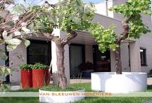 Achtertuin / Achtertuin, ontwerp & aanleg door Van Sleeuwen Hoveniers - Veghel. Meer stadstuinen treft u op www.vansleeuwenhoveniers.nl.