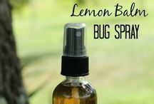Natural bug repellents! / Bug repellents you can make at home! / by Penny Smithey