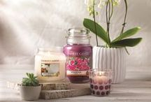 Pure Essence: Yankee Candle / Have a refreshing and releaxing 2015, with our brand new Pure Essence range of fragrances including Aloe Water, Cassis and Shea Butter.