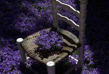 purpura, lila, violeta, lavanda...bello