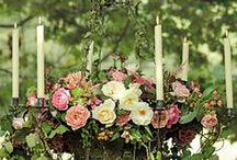 wedding / by Lisa Carnes