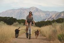 Cycling with Your Best Friend / Check out all our great products for taking your best friend along for the ride in the great outdoors!