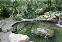 my pools