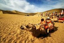 Gan Su Dunhuang Tour,Travel Guide / Gan Su Dunhuang Tour www.westchinago.com