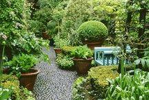 Home - Garden / by Bronwyn Green