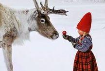 christmas / by jillian stuart