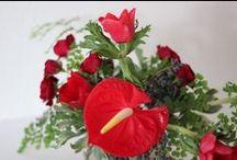 Bloemen en kamer planten.