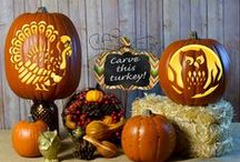 Fall Carvings / Jack o'lanterns may be the first thing that comes to mind when it comes to carving pumpkins, but autumn inspired designs can be just as spectacular.