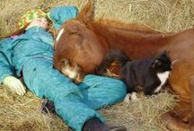 Animali / L'amore per gli animali nasce da sempre grazie all'educazione di mamma e papà.