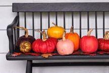 Fall Decor Ideas / DIY ideas and inspiration for beautiful Fall home decor.