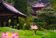 LOVE Japan!