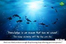 e-learning / Najciekawsze grafiki poświęcone nauce on-line.