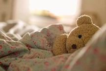"""Teddy Bears and hares ... / This board is dedicated to ... People who are not afraid to stand up in a crowd and say, """"I'm a bear lover and proud of it."""""""