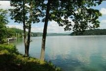 Lake Property  for Sale / View lake lots and property for sale on Norris Lake.