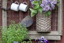 Puutarhaunelmia / Puutarhaistutuksia, portteja, ihania vinkkejä pihaan ja puutarhaan