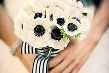 black & white / Black & white fashion theme ~ HOT color scheme for #2013!     / by Melinda Tomasello