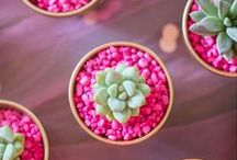 pink / by Melinda Tomasello